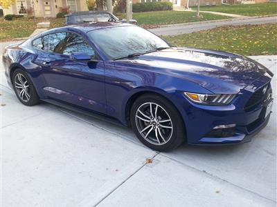 2015 Ford Mustang lease in Greenfield,WI - Swapalease.com