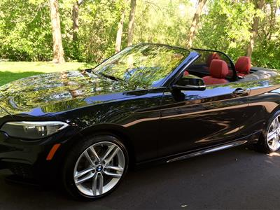 2016 BMW 2 Series lease in Plymouth,MN - Swapalease.com