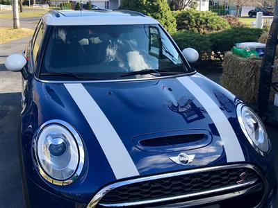 2017 MINI Hardtop 4 Door lease in Oceanport,NJ - Swapalease.com