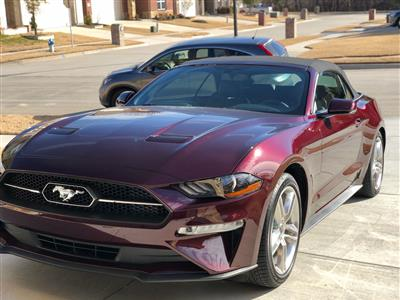 2018 Ford Mustang lease in Plano,TX - Swapalease.com