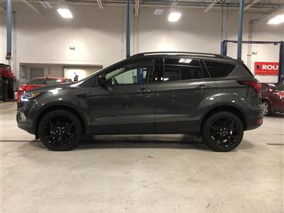 Ford Lease Deals Ct >> 2019 Ford Escape