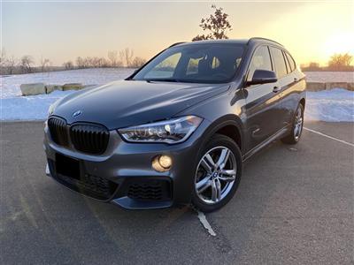 2018 BMW X1 lease in Saint Paul,MN - Swapalease.com
