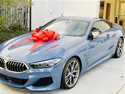2019 BMW 8 Series lease in Kingwood,TX - Swapalease.com