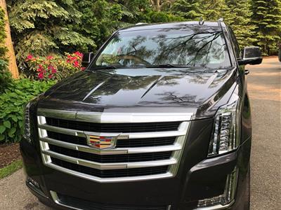 2017 Cadillac Escalade lease in Birmingham,MI - Swapalease.com