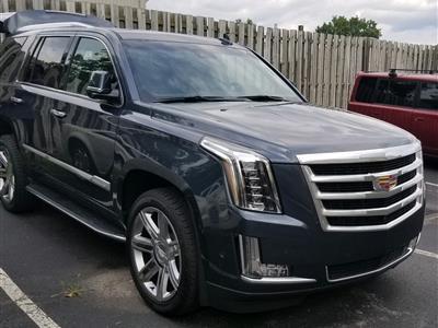 2019 Cadillac Escalade lease in Toledo,OH - Swapalease.com