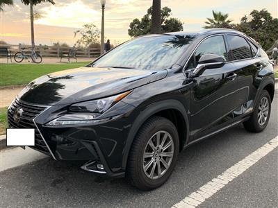 2019 Lexus NX 300 lease in Cumming,GA - Swapalease.com
