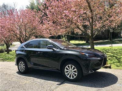 2018 Lexus NX 300 lease in New York,NY - Swapalease.com