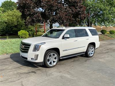 2019 Cadillac Escalade lease in CranberryTownship,PA - Swapalease.com