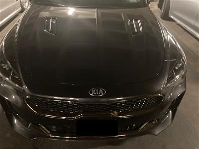 2019 Kia Stinger lease in New Rochelle,NY - Swapalease.com
