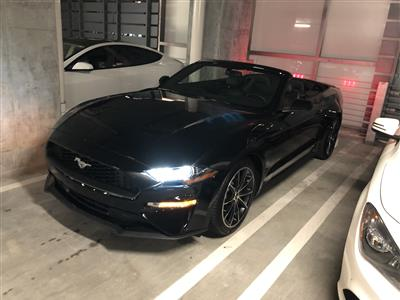 2020 Ford Mustang lease in Miami,FL - Swapalease.com