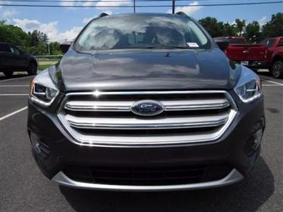 2019 Ford Escape lease in Sparta,NJ - Swapalease.com