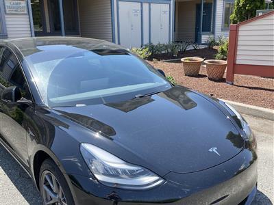 2021 Tesla Model 3 lease in marlton ,NJ - Swapalease.com