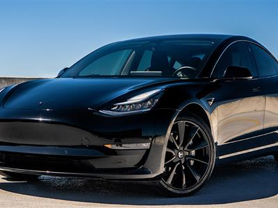 2021 Tesla Model 3 lease in St. Petersburg,FL - Swapalease.com