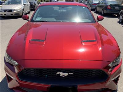 2019 Ford Mustang lease in San Jose,CA - Swapalease.com