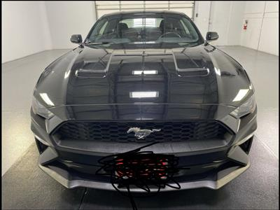 2020 Ford Mustang lease in Sugarland,TX - Swapalease.com