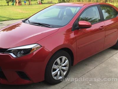2014 Toyota Corolla lease in Versailles,KY - Swapalease.com