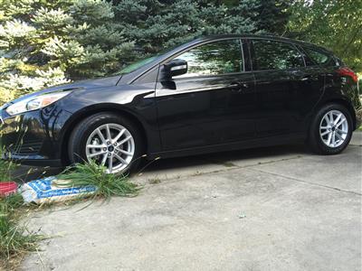 2015 Ford Focus lease in Garden City,MI - Swapalease.com